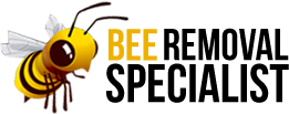 Bee Removal Specialist