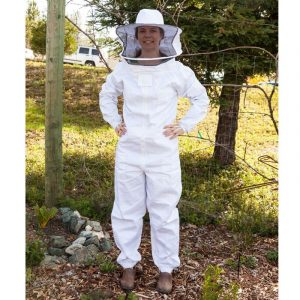 bee removal dallas