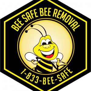 Price of Bee Removal