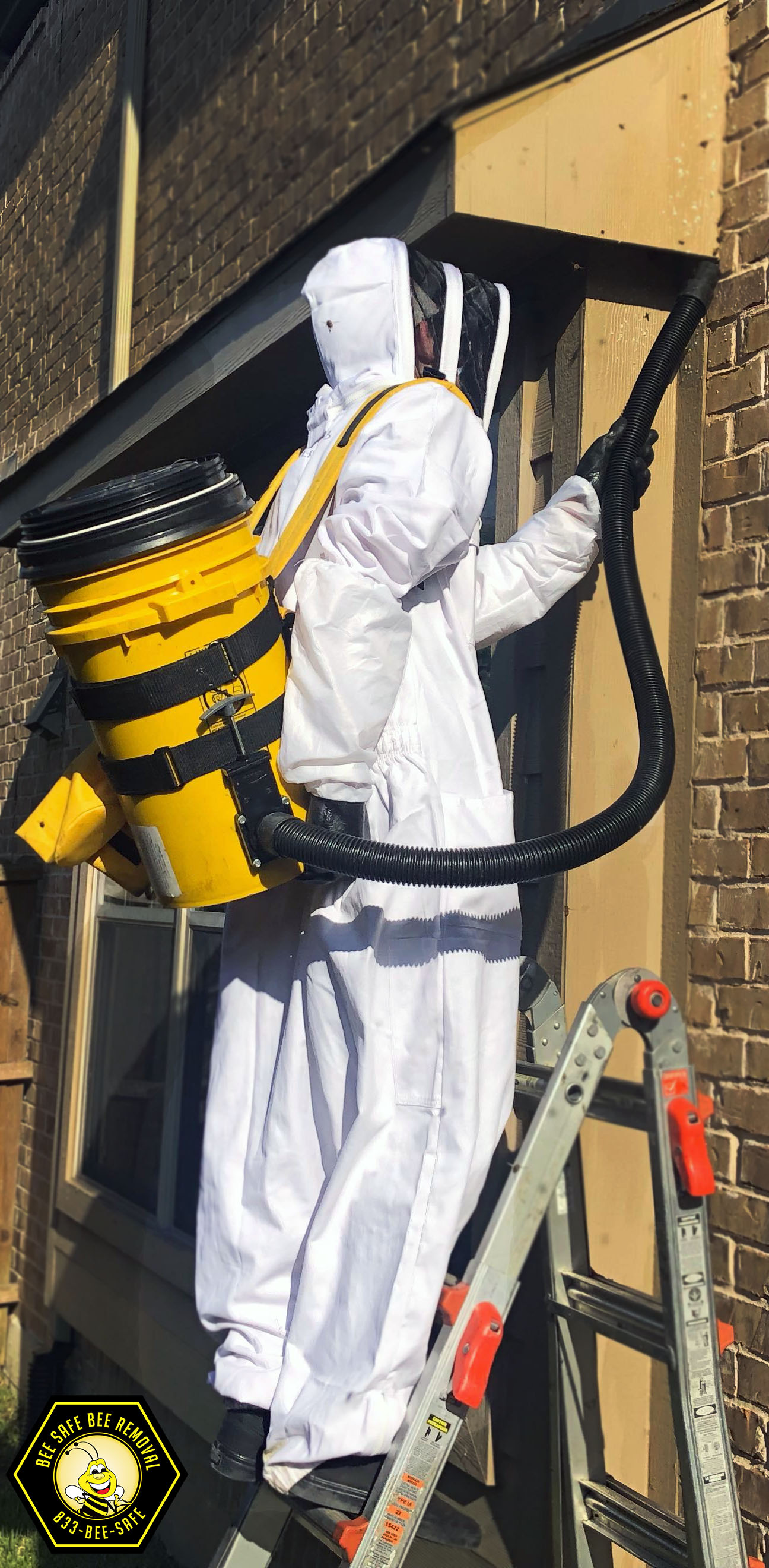 Beekeeper removing bees from Frisco home