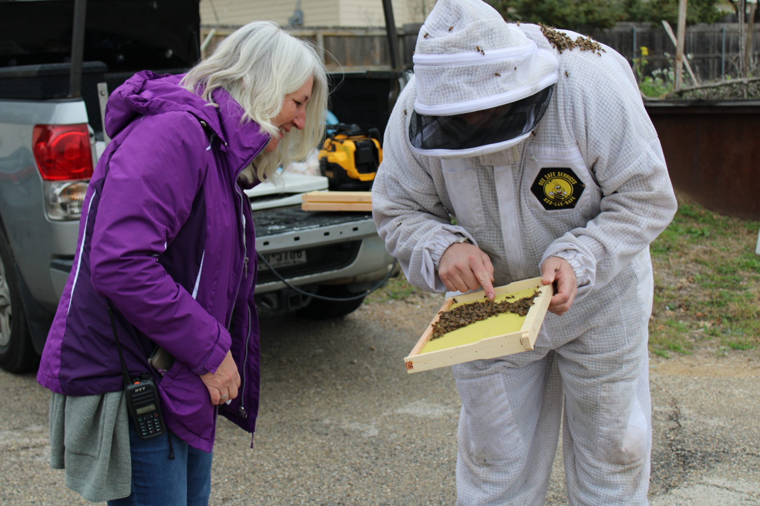 Bee Removal Services and Warranties